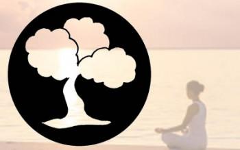 Yoga de Boom Baarn