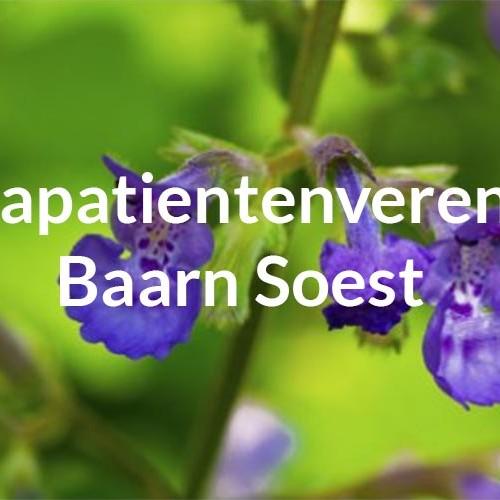 Reumapatientenvereniging Baarn Soest e.o.