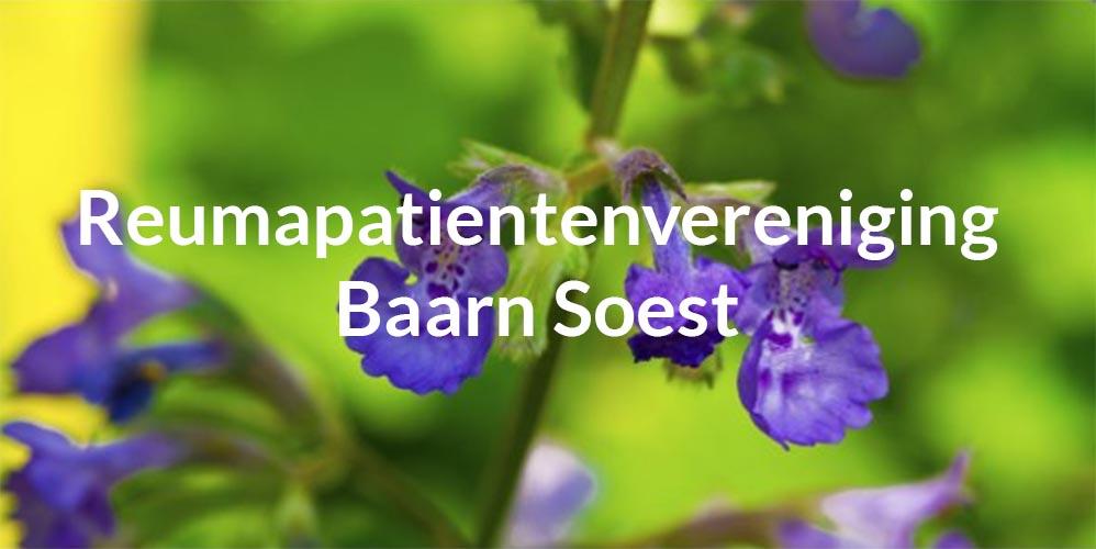 Reumapatientenvereniging Baarn Soest e o